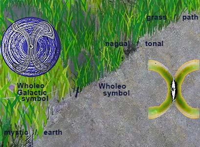 Wholeo Galactic and Wholeo symbols with Grass/Path